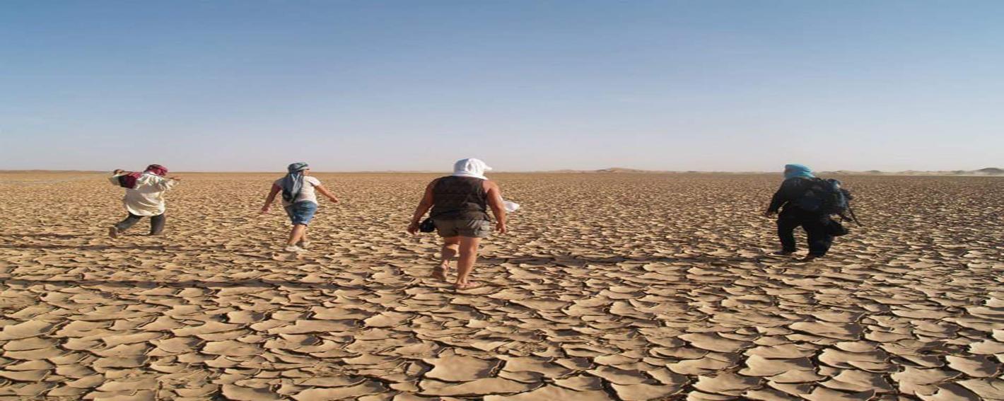 Circuit dromadaire désert Maroc