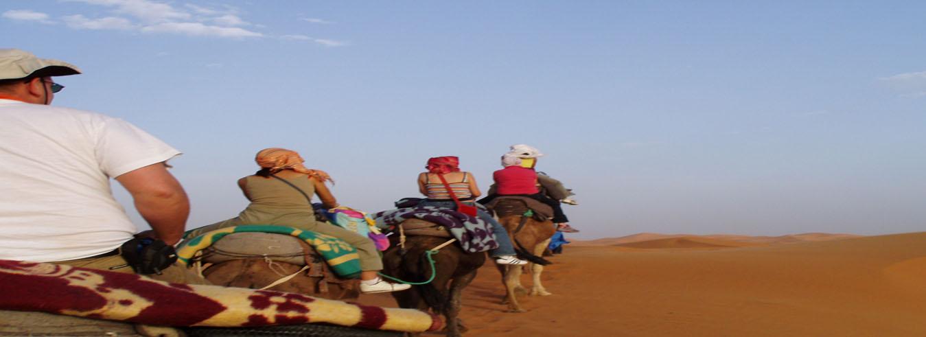 http://moroccotourtravel.com/wp-content/uploads/2016/11/camel.jpg