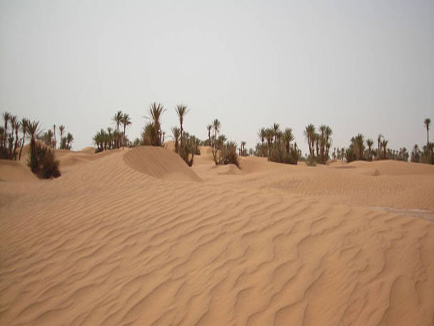 7 Days Tours Marrakech Desert