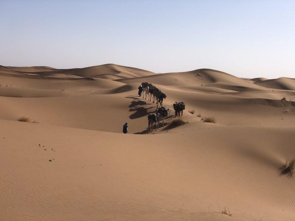 circuit 10 jours trek et 4x4 désert Marocain, trek, trekking, 4x4 dromadaires