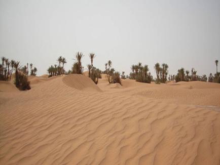 7 Days Tours Marrakech Desert